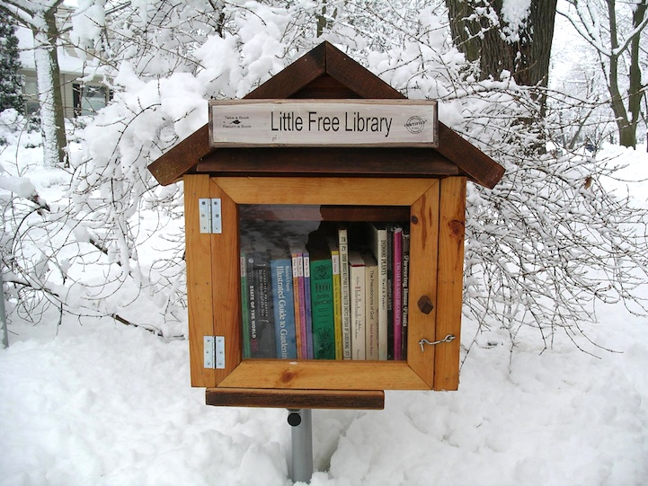 Little Free Library for the Neighborhood