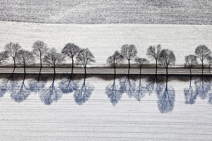 Blue Shadows of Barren Winter Trees by Aerial Photographer, Klaus Leidorf