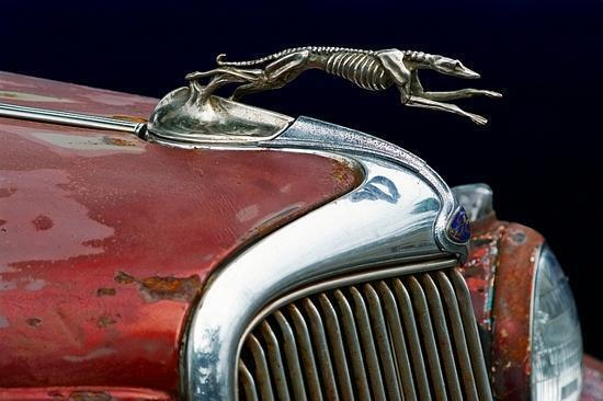 Freeyork: Skeleton Hood Ornament