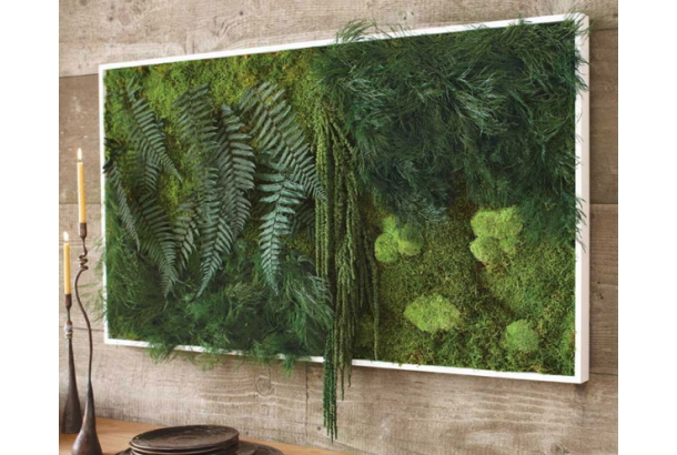 Fern and Moss Wall Art - Naocs, Roomie.jp