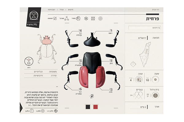 Interactive Insects Field Guide by Yaen Cohen