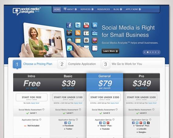 Social Media Analysts Website