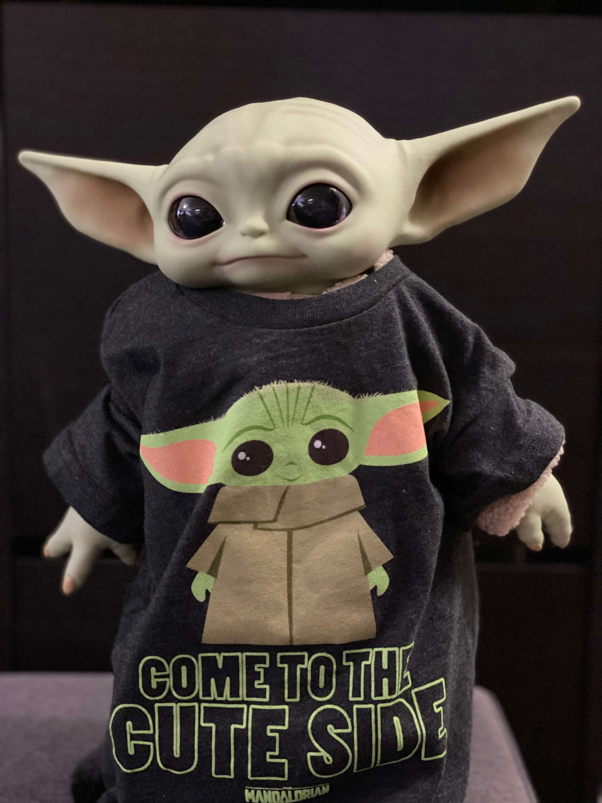 "The Child is a Baby Yoda Fan Too! Star Wars: The Mandalorian The Child 11"" Plush With Vinyl Head by Mattel via Disney 